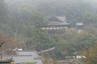 長谷寺全景