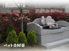 ペット墓地永代供養墓