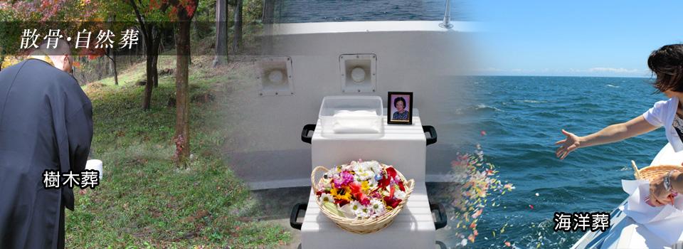宝性寺 自然葬 海洋葬